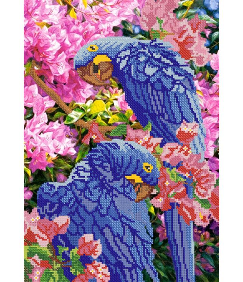 РКП-066 Попугаи